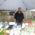 Cosmos Organic Farm