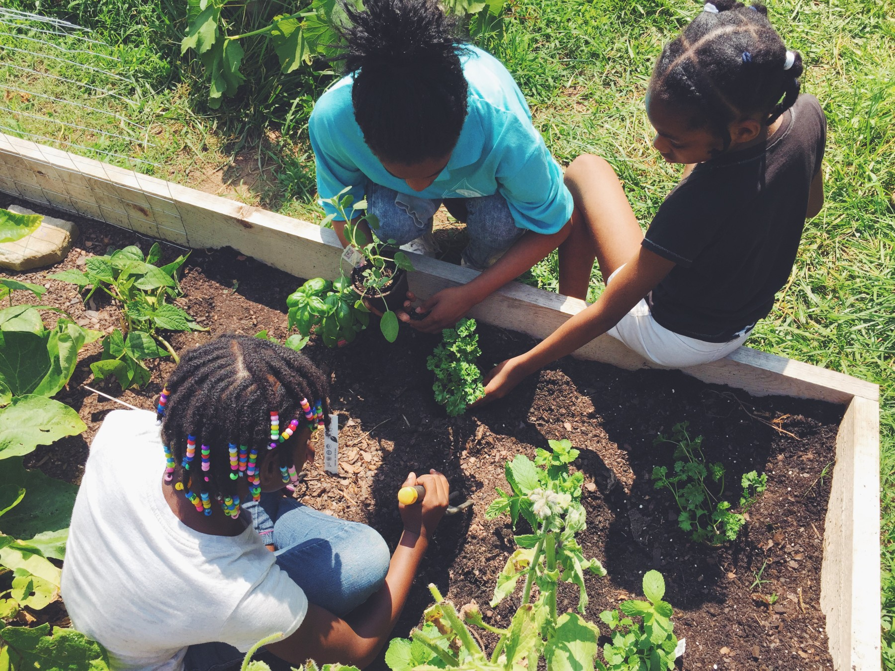 EAV Learning Garden