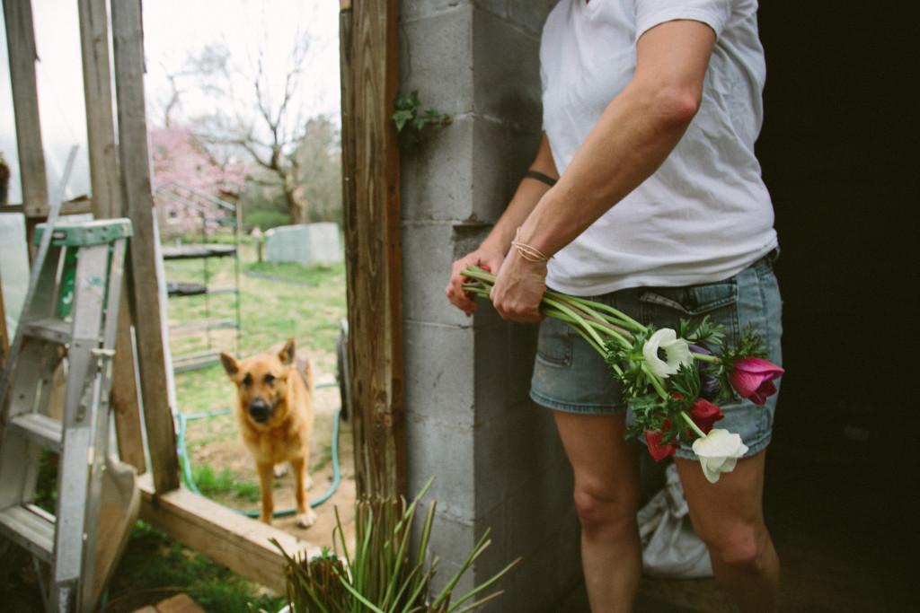 2016-03-10 Stolen Flowers Farm 53