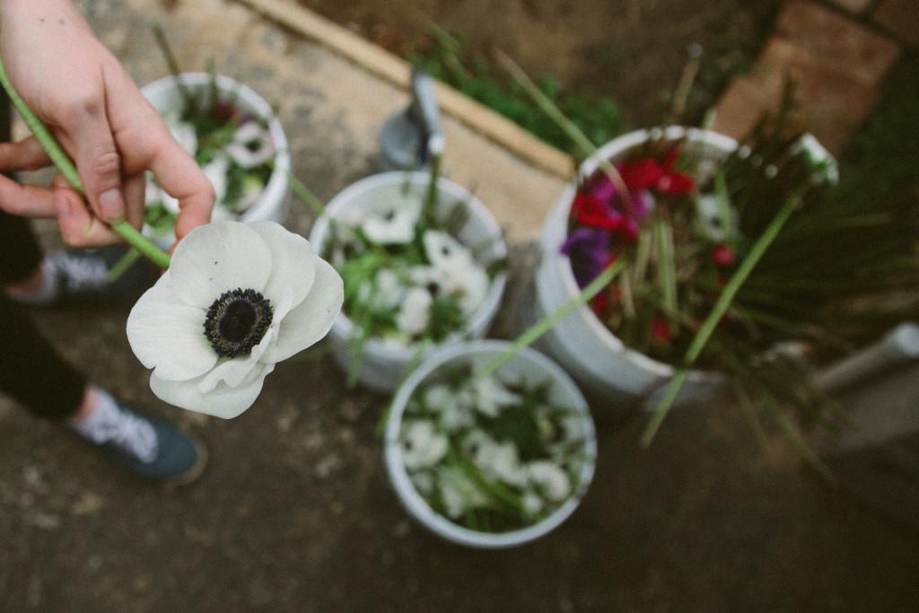2016-03-10 Stolen Flowers Farm 8