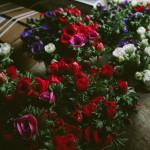 Stolen Flowers Farm