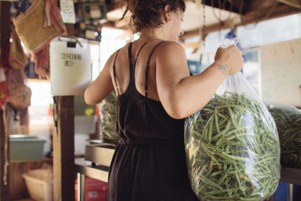 Julia Asherman from Rag & Frass Farm