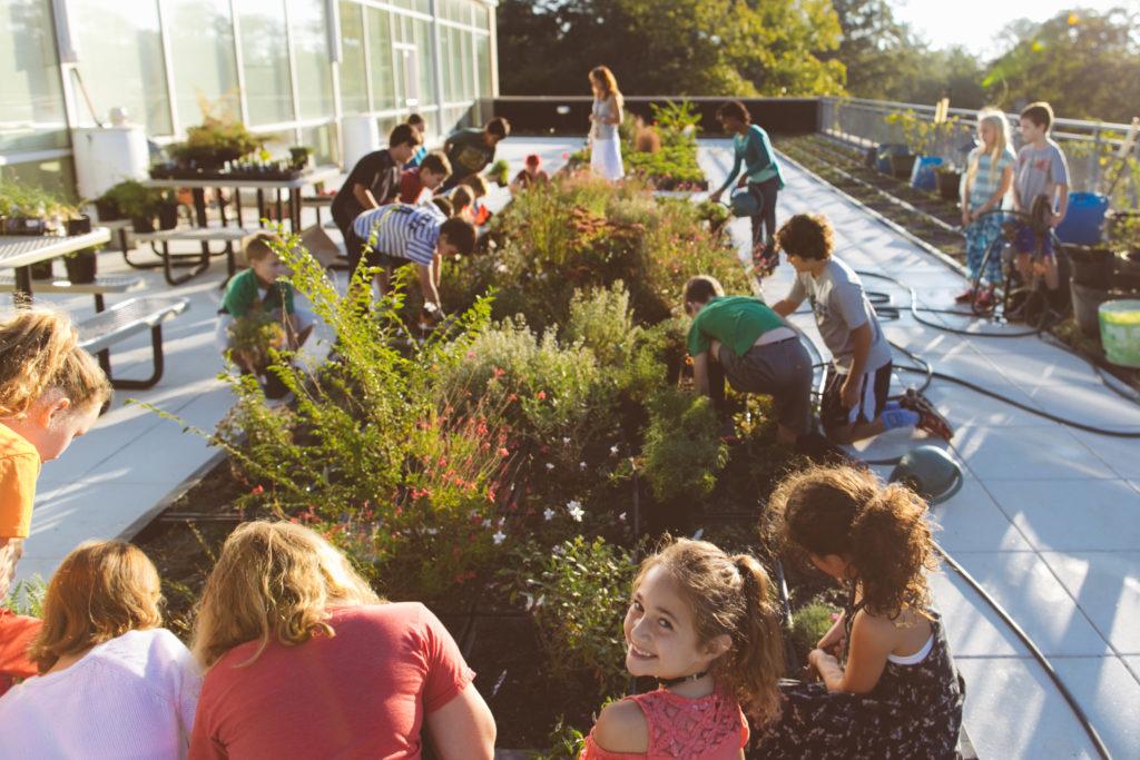 Outreach Spotlight Seasonal Planting At Springdale Park